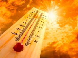 calor en adultos mayores