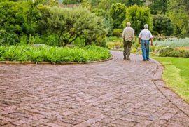 ejercicio-ancianos
