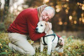 Mascotas y adultos mayores